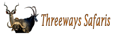 Threeways Safaris